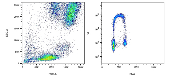 Two flow cytometry dotplots