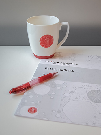 PhD Handbook, pen and cup of coffee