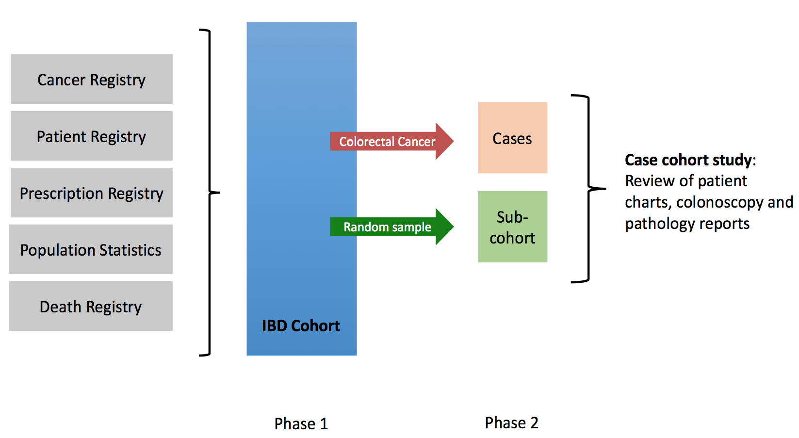 I Scan Risk Of Colorectal Cancer In Inflammatory Bowel Disease Institute Of Health And Society