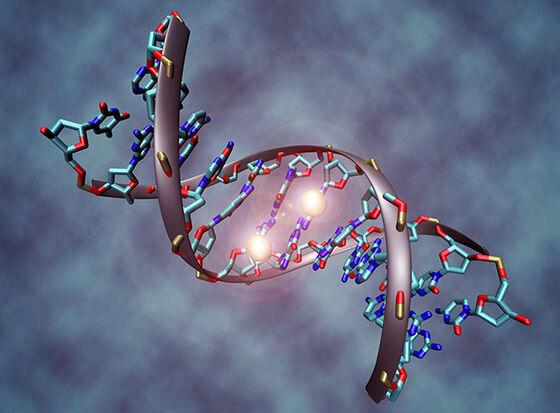 Illustrasjon av en bit DNA med to metylgrupper på