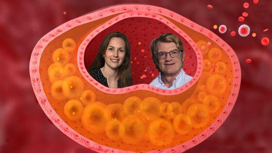 Bildet viser ansiktet til en mann og en kvinne satt inn i et tegnet tverrsnitt av en blodåre