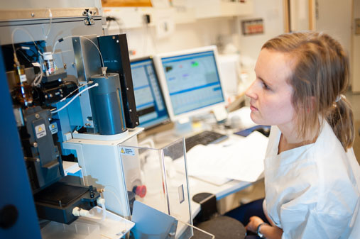 Image of doctoral student Louise Risnes sorting out lymphocytes from tissue samples