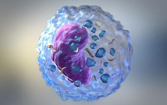 Illustrasjon av en lymfocytt