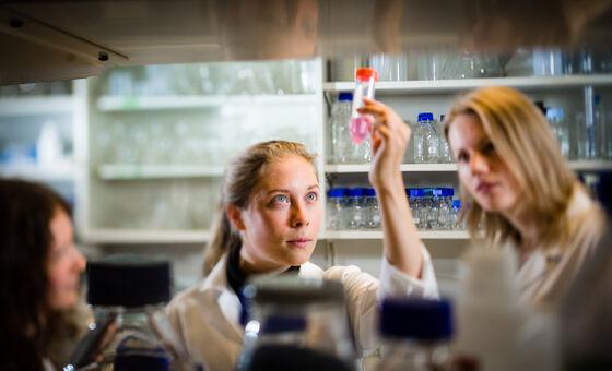 Kristina Ivanauskiene, Annika Winsnes og Torunn Rønningen undersøker cellemateriale på Philippe Collas' laboratorium.