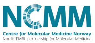 NCMM logo