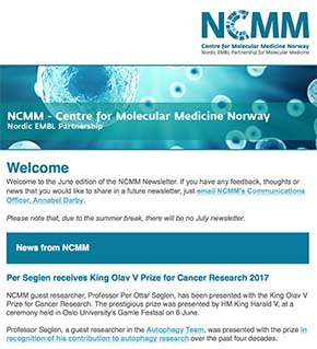 Screenshot of June newsletter