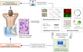 Illustration of precision medicine process