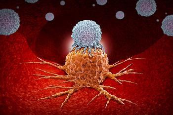 Tegnet scene fra en blodåre. Hvit blodcelle sitter oppå en kreftcelle som klorer seg fast til åreveggen.