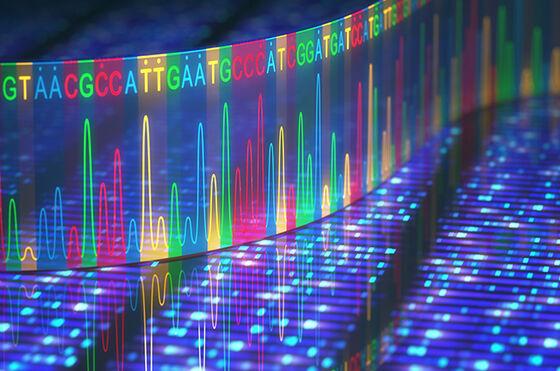 Histogrammer fra DNA sekvensering. Hver DNA-base har hver sin farge.